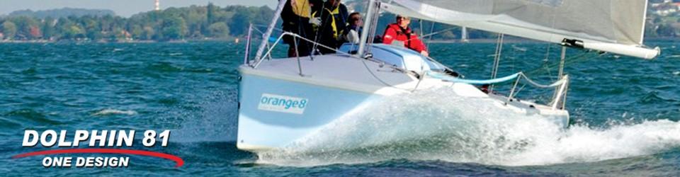 Dolphin 81